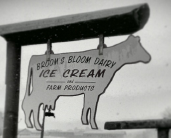 Broom's Bloom Dairy
